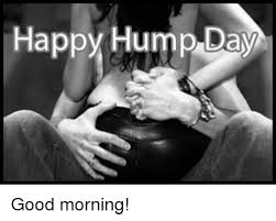 Hump Day Meme - happy hump day good morning hump day meme on me me
