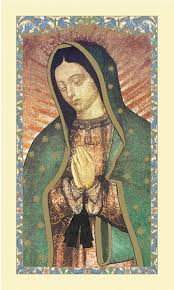 our of guadalupe magnificat laminated gerffert 25pkg holy cards