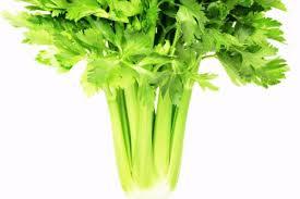sedano bianco sedano verde bianco e rapa alleati di salute