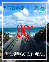 Florida Winter Meme - winter in fl the struggle is real memes winter and florida meme