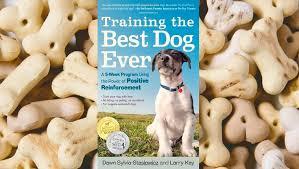 belgian malinois 101 youtube 10 top rated classic dog training books dogtime