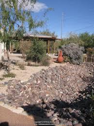 Botanical Gardens El Paso Gardens Photo Tours Forum El Paso Desert Botanic Garden