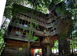 captivating 9 unique tree house designs and extraordinary