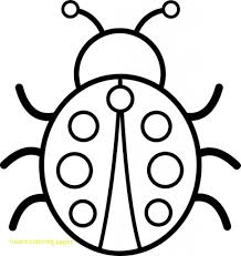coloring pages insects bugs insect coloring pages with insect coloring page insects sheets for
