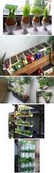 43 best creative indoor gardening images on pinterest gardening