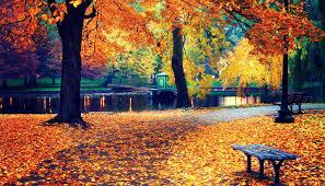Why Fall Is The Best Season 5 Reasosn Fall Is The Best Season