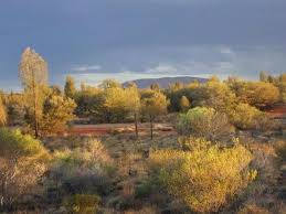 best price on desert gardens hotel in ayers rock uluru reviews
