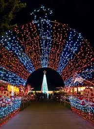 lights of christmas stanwood meet joyce as she presents many of the fun activities to do at the