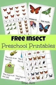 164 best insect preschool theme images on pinterest preschool