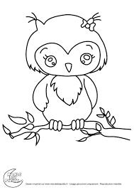 coloriage hibou les beaux dessins de animaux à imprimer et