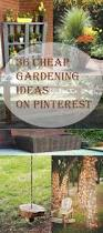 Cheap Landscaping Ideas For Backyard by Top 25 Best Cheap Garden Fencing Ideas On Pinterest Cheap
