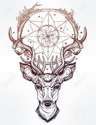 hand drawn romantic beautiful drawing of a deer head with dream
