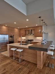 Designers Kitchen Contemporary Kitchen Designs Discoverskylark