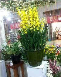 artificial orchid silk flower arrangement big size bonsai no vase