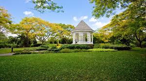 Botanic Garden Mrt Take A Guided Walk From Botanic Gardens Mrt To Bukit Brown