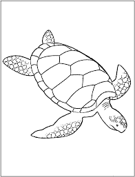 free printable sea turtle coloring pages for kids with turtle