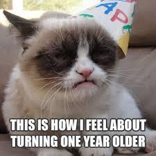 Grump Cat Meme - grumpy cat meme birthday clevver