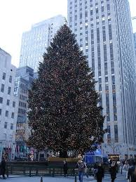 when is the christmas tree lighting in nyc 2017 the 2014 rockefeller christmas tree lighting brightening up nyc for