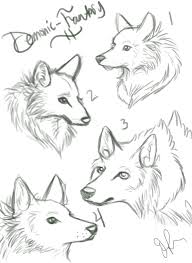 wolf sketches by spinning jenny on deviantart