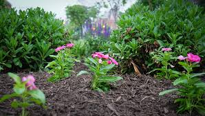 Garden Mulch Types - mulch blog bulk mulch for your garden or landscape