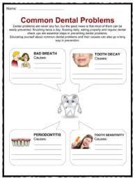 teeth facts worksheets u0026 information for kids