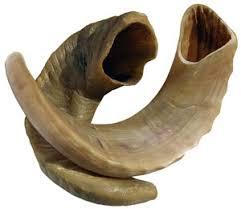 rams horn shofar ram s horn shofar judaica guide