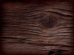 wood grain google search f15 pinterest