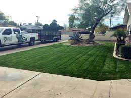 Residential Landscaping Services by Residential Lawn Care In Queen Creek Bv Lawn Care