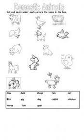 english teaching worksheets domestic animals