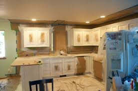 Spray Paint Cabinet Doors Spray Paint Kitchen Cabinets How To Desjar Interior 24 Quantiply Co