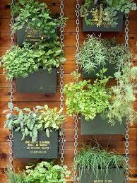Indoor Hanging Garden Ideas Hanging Garden Ideas Stunning Landscape And Garden Center
