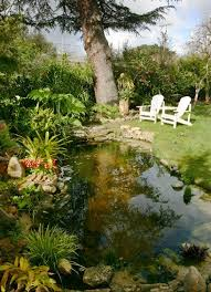 Backyard Swimming Ponds by 183 Best Natural Swim Pond Ideas Images On Pinterest Landscaping