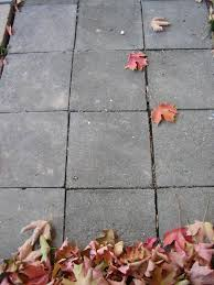 Painting Patio Pavers Concrete Stain Removal How To Remove Common Stains Install It