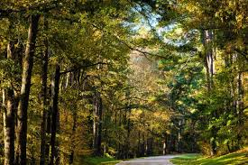 Mississippi scenery images 9 scenic byways in mississippi jpg