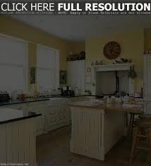 100 modern kitchen remodeling ideas contemporary kitchen