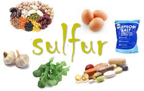 sulfur supplement and food lists u2013 leaves of life