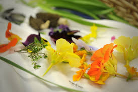 les fleurs comestibles en cuisine un cuisinier au jardin christine blais cuisine