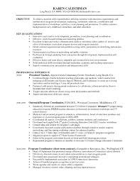excellent writing skills resume coordination skills resume free resume example and writing download program coordinator resume