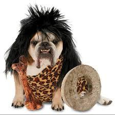 buy zelda cave dog caveman pet halloween costume size medium in