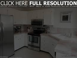 Prefab Kitchen Cabinets Home Depot White Kitchen Cabinets Home Depot Tehranway Decoration