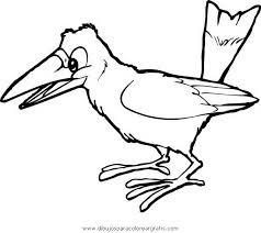 imagenes del animal urraca dibujo urraca en la categoria animales diseños