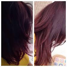 brown plum hair color diy plum burgundy hair dark brown hairs of plum brown hair color