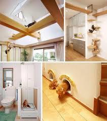 pet friendly house plans pet purrrfect the ultimate cat friendly interior design