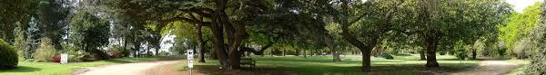 Geelong Botanic Gardens by Botanic Gardens