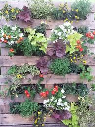 83 best garden pallets images on pinterest pallet gardening