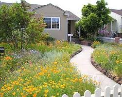 48 best california native landscaping ideas images on pinterest