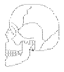 Ascii Art Flowers - 58 best ascii art images on pinterest ascii art keyboard and