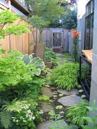 shade garden landscape contemporary with tree contemporary