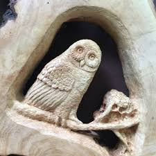 owl wood carving sale wood carving owl and raccoon carved wall