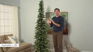bixley pencil pre lit tree product review
